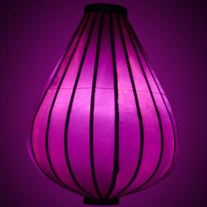 https://supplier-images-myshop.r.worldssl.net/resizer/1301000/pictures/UV-TR-PA-verlicht-300.jpg