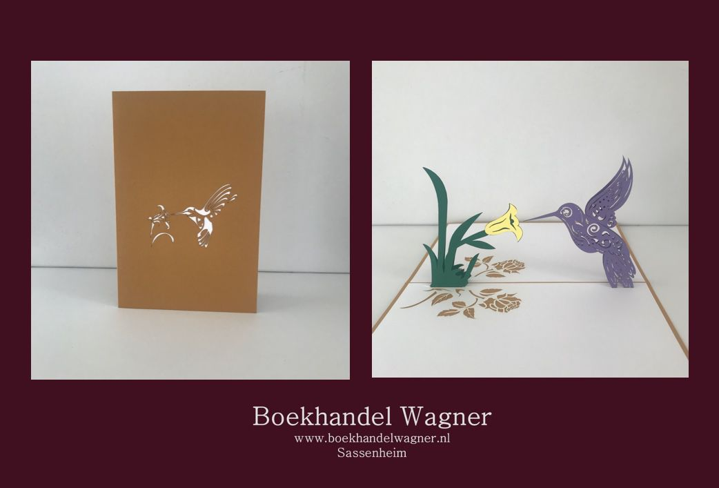 Wenskaart kolibri met bloem