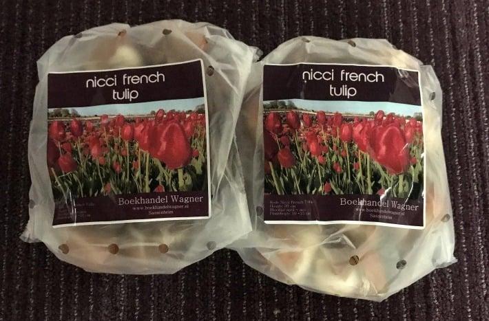 Nicci French Tulpen - Twee zakjes