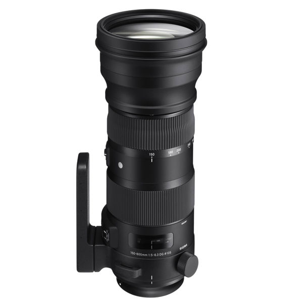 Sigma 150-600mm F5-6.3 DG OS HSM Contemporary Nikon