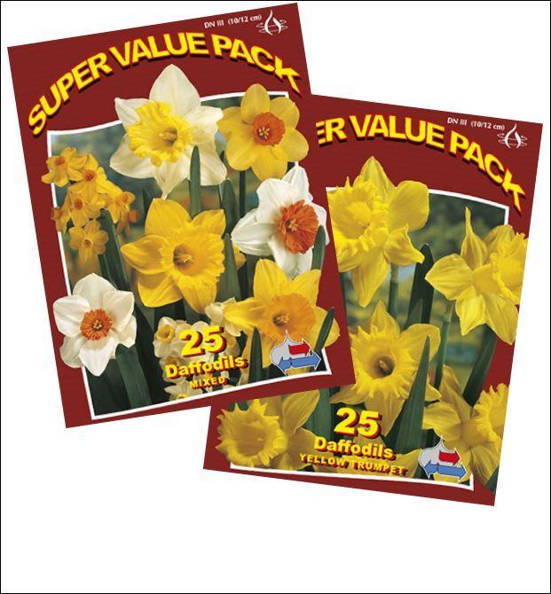 http://plugin.myshop.com/images/shop5058400.pictures.SVP_Assortment_Daffodil.JPG