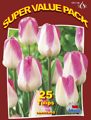 http://plugin.myshop.com/images/shop5058400.pictures.SVP_Innuendo.JPG