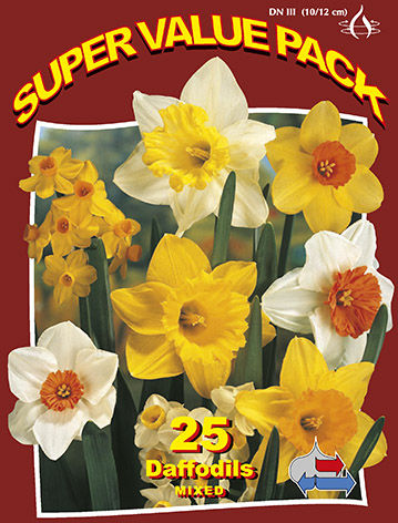 http://plugin.myshop.com/images/shop5058400.pictures.SVP_daffodils_mixed.JPG