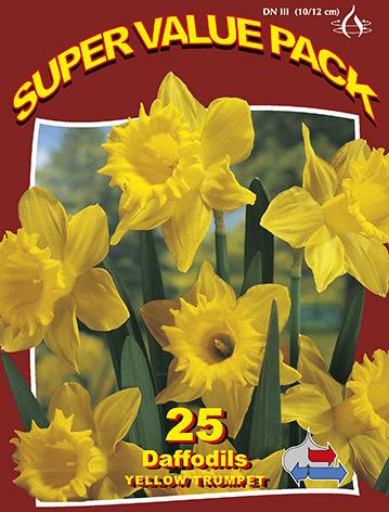 http://plugin.myshop.com/images/shop5058400.pictures.SVP_daffodils_yellow_trumpet.JPG