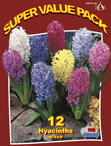 http://plugin.myshop.com/images/shop5058400.pictures.SVP_hyacinths_mixed.JPG