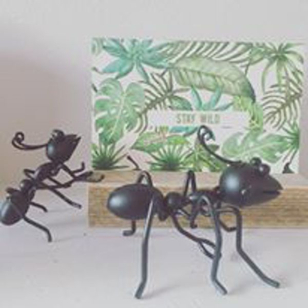 <span style=&#34;font-family:'courier new', courier, monospace;&#34;>Black Ants 10cm </span>