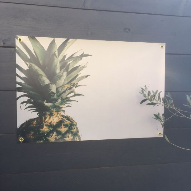 <span style=&#34;font-family:'courier new', courier, monospace;&#34;>Pineapple love&#160;</span>