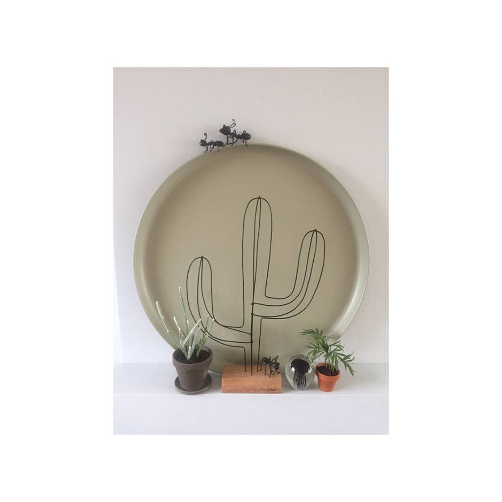 http://plugin.myshop.com/images/shop5332400.pictures.xxl-cactus-zwart.large.jpg