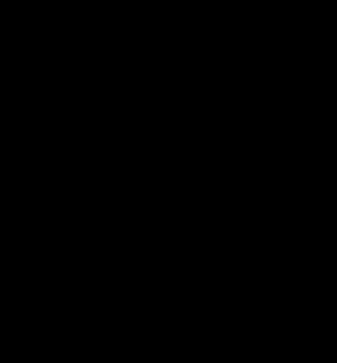 Taboeret houten zitting 50cm/zwart