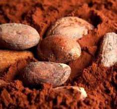 Cacao Poeder Raw