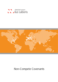 Non-Compete Covenants